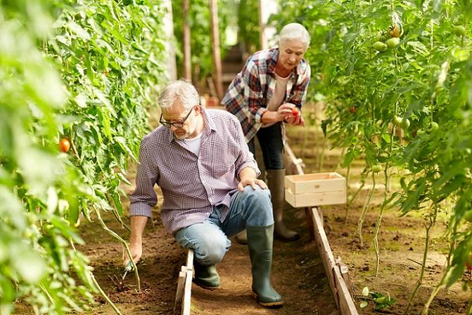Die Rentenversicherungsnummer erhält man heute schon mit der Geburt. Nach der einmaligen Zuteilung durch die Rentenversicherung bleibt sie erhalten. (#01)